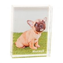 Pet Photo Crystal Block - Personalised Pet Lovers Photo Gift